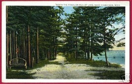 MULLET LAKE MICHIGAN Neath Pines Cheboygan NU - $8.00