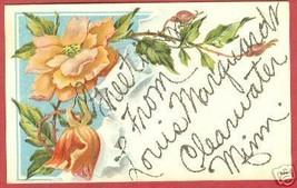CLEARWATER MN Marquardt Greeting Floral Minnesota BJs - $6.50