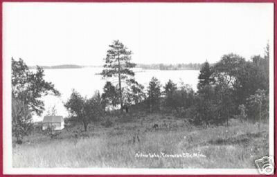 Primary image for TRAVERSE CITY MICHIGAN Silver Lake RPPC MI