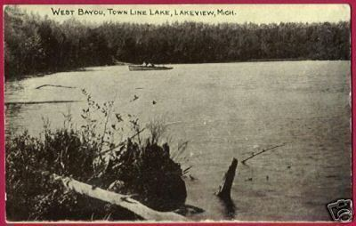 LAKEVIEW MICHIGAN Town Line Lake W Bayou MI Postcard