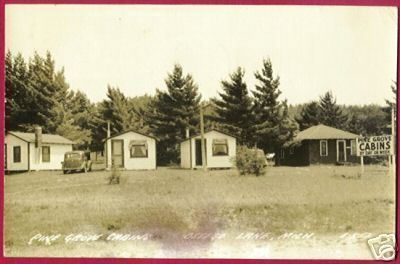 Primary image for OTSEGO LAKE MICHIGAN Pine Grove Cottages 1942 RPPC MI
