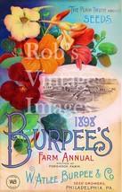 1898 Burpees Vintage Farm Ann  Garden Flower  Seed  Catalogue Poster Art... - $8.10