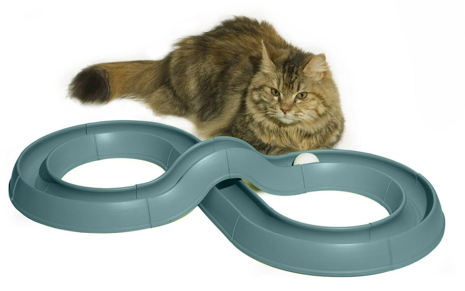 Primary image for Pets Cat Circular Track Ball Playing Learning Entertainment Set Toy Set NEW
