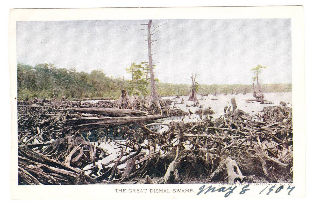 Pc dismal swamp