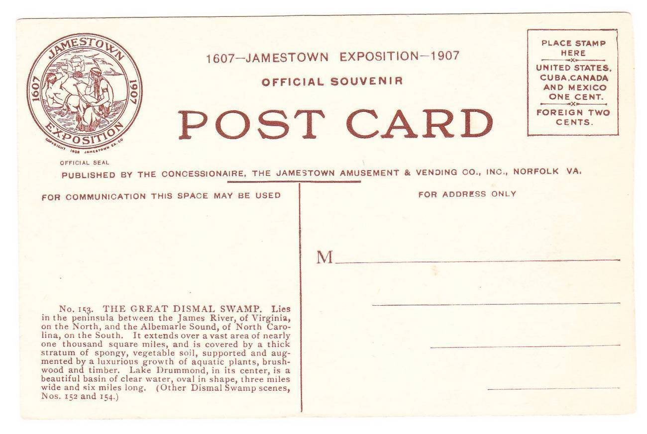 Vintage 1907 Postcard Great Dismal Swamp Jamestown Expo VA