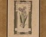 Tulips thumb155 crop