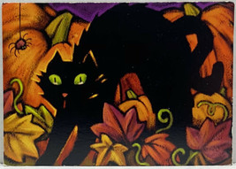 Happy Halloween Black Cat Spider Pumpkins Fall Leaves Hallmark Photo Postcard - $11.65