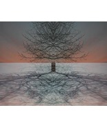 Tree at the End of the World, Photo Based Digital Art, size  - $30.00