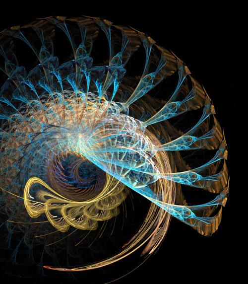 Spirals within spirals