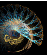 Spirals within Spirals, Fractal Based Digital A... - $24.99