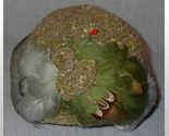 Gray feather hat1 thumb155 crop