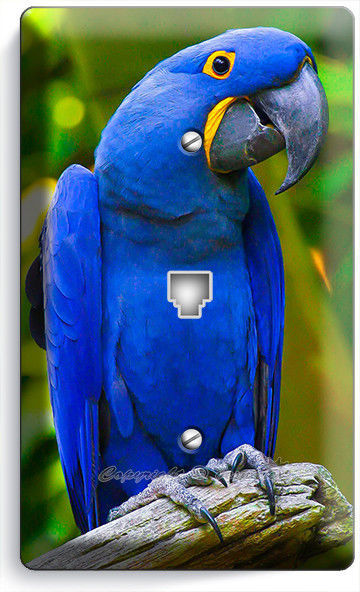 TROPICAL BLUE MACAW BIRD PARROT PHONE TELEPHONE WALL PLATE COVER ROOM HOME DECOR