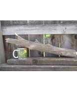 DRIFTWOOD FOR AQUARIUM CRAFTS WALL ART TERRARIUMS FROM ROCKY MOUNTAINS U... - $19.05