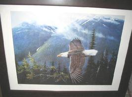 Eagle1 thumb200