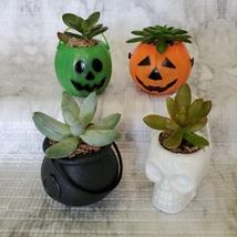 Live Succulent in Mini Halloween Planter, Pumpkin Jack O'Lantern Skull Cauldron image 2