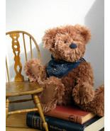 "Boyds Bears ""Opie B. Beanster""  # 93550V-  16"" QVC Exclusive Bear- NWT- ... - $39.99"