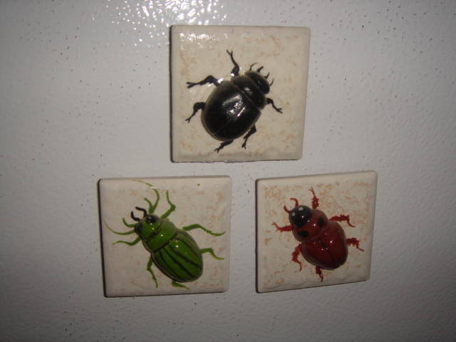 Assorted magnets 003