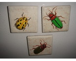 Assorted magnets 004 thumb155 crop