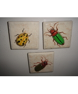 Magnets  Assorted Bugs - $9.00