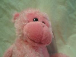 "Ty Pinkys Pink Monkey Chimp Hanging Velcro Plush Soft Toy Stuffed Animal 17"" image 2"