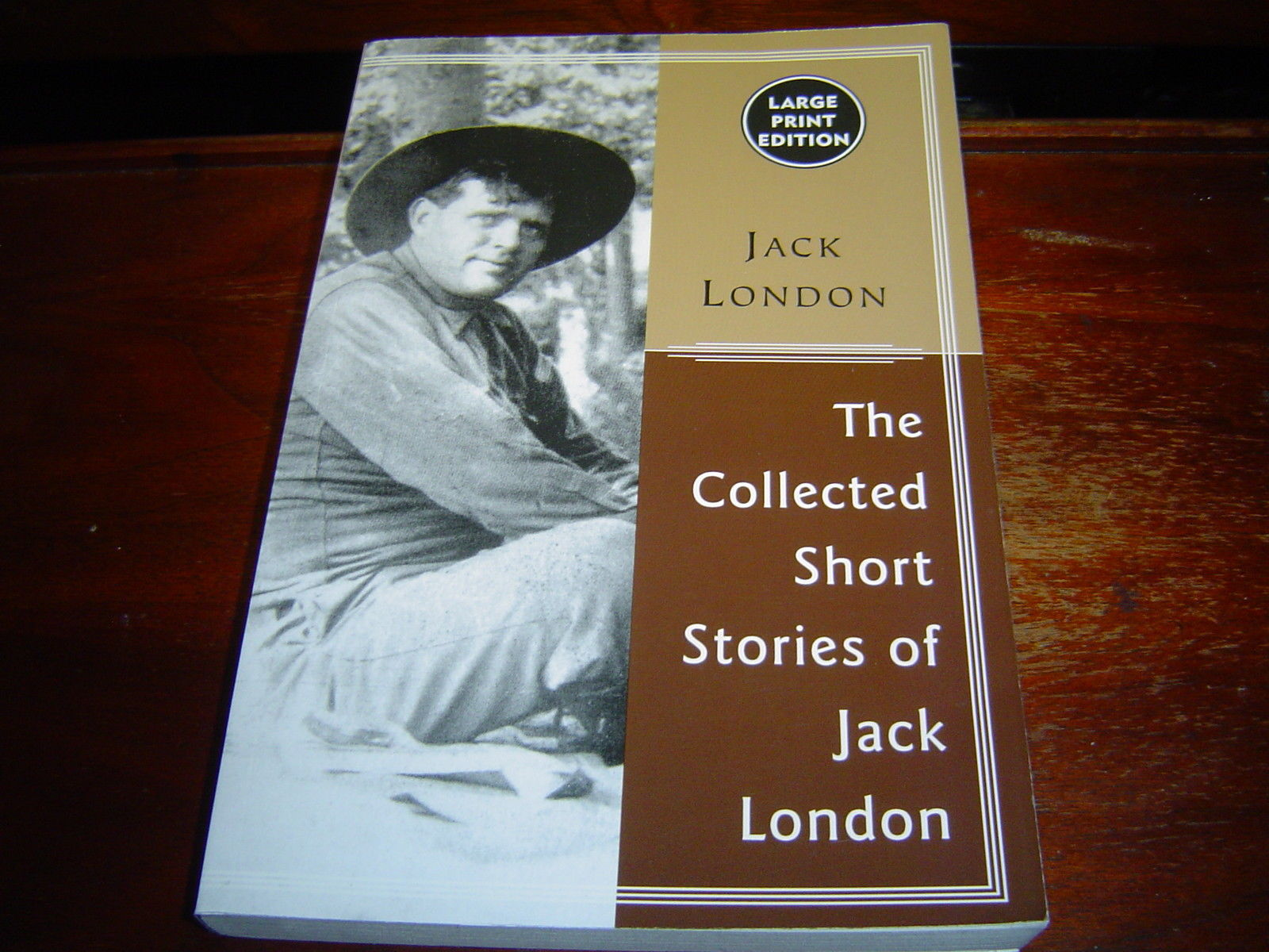 LARGE PRINT The Collected Stories of Jack London (2000)