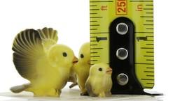 Hagen Renaker Miniature Canary Family Ceramic Bird Figurine Set of 3 image 2