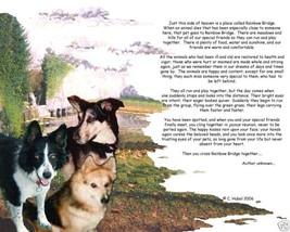 Your  Beloved Pet at the Rainbow Bridge Memorial image 4