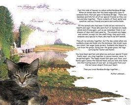 Your  Beloved Pet at the Rainbow Bridge Memorial image 2