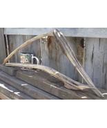 DRIFTWOOD FOR AQUARIUM CRAFTS WALL ART TERRARIUMS FROM ROCKY MOUNTAINS U... - $12.05