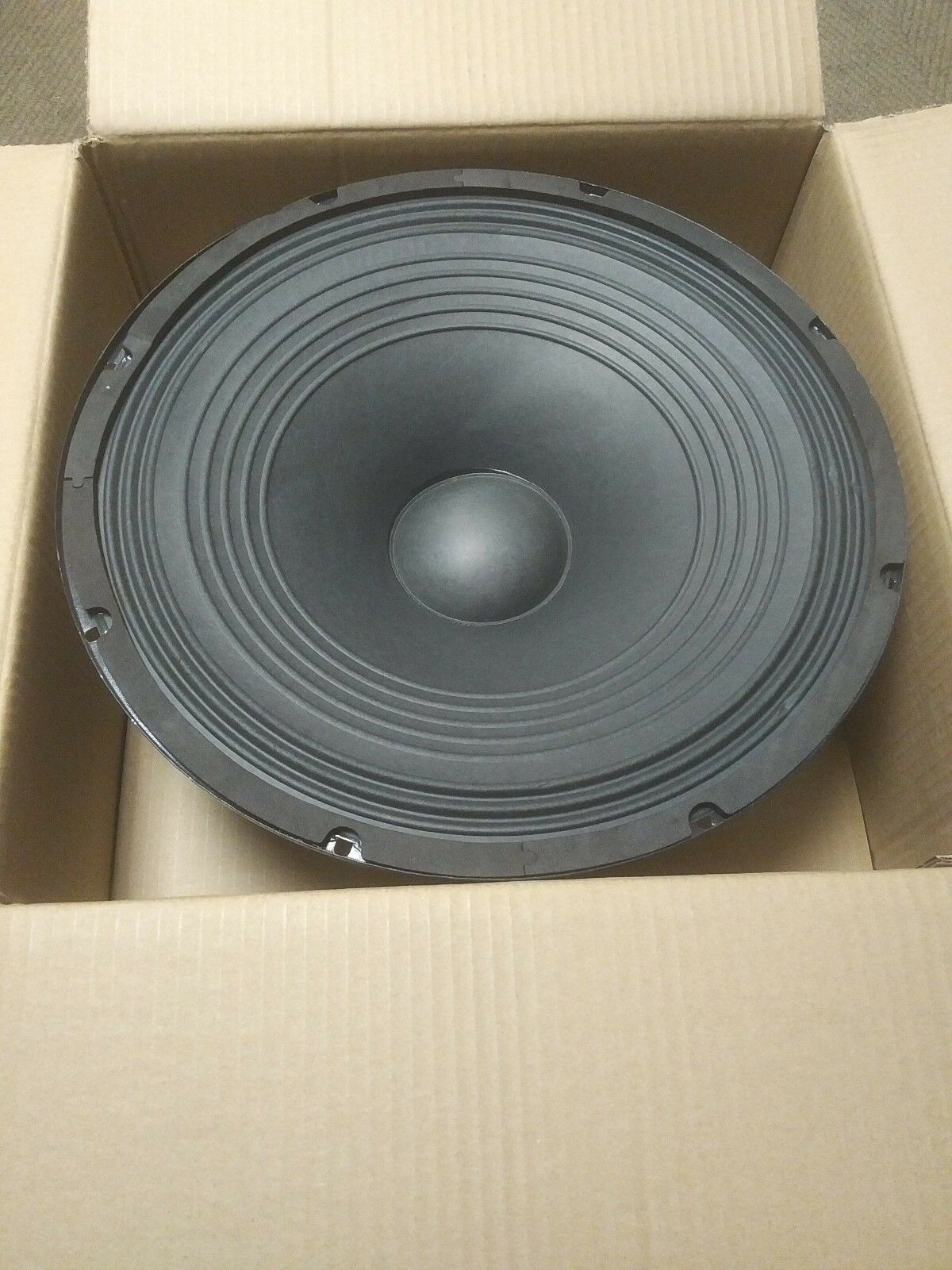 """Technical Pro PW15C  15"""" 1200W PA/DJ Raw Replacement Woofer/Speaker"""