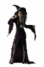 Sorceress Adult Womens Costume Wicked Witch West Halloween Dress Disguis... - $35.76