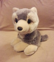 5f23d9d5c02 TY Wild Wild Best ROCKY the SIBERIAN HUSKY DOG plush Big yellow eyes 201.