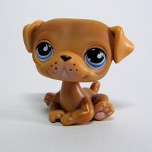 Littlest Pet Shop # 786 / 901 PUG Puppy Dog, Brown, Blue Tear Drop Eyes LPS - $95,90 MXN