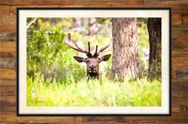 Elk Art, Nature Home Decor, Nature Prints, Man Cave Wall Art, Wildlife P... - $30.00+
