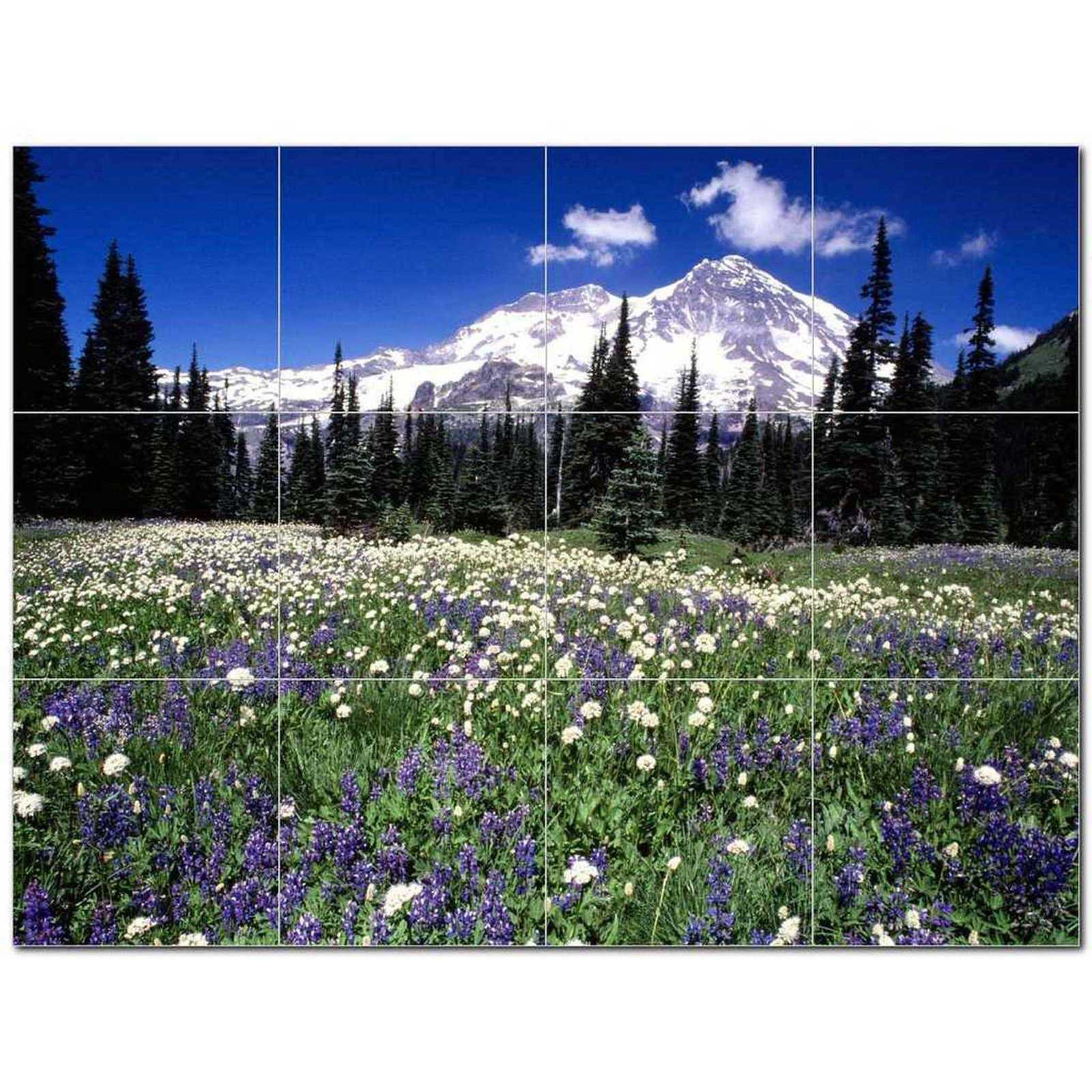 Primary image for Mountain Picture Ceramic Tile Mural Kitchen Backsplash Bathroom Shower BAZ405564