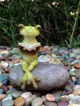 New Garden Decor Miniature Fairy Garden ~ Frog reading book - $16.00