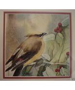 Dragana Tornquist Newport RI Artist Watercolor Painting Signed 01332 - $165.00