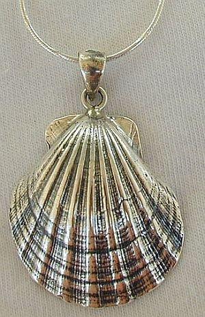 Shell pendant a