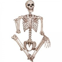 Scary Halloween Decorations Indoor Props Skeleton Real Size Figure Party... - $2.036,55 MXN