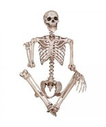 Scary Halloween Decorations Indoor Props Skeleton Real Size Figure Party... - £79.01 GBP