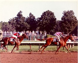 DVD - AFFIRMED & ALYDAR's 1978 TRAVERS STAKES - Dual Televised Broadcasts!! - $39.99