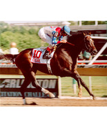 """DVD - CIGAR's """"RACE to HISTORY"""" - 4 Entire RACE BROADCASTS!! 2-1/2 HOURS!! - $34.99"""