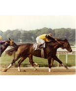 DVD - FOREGO 19 Entire RACES/RETIREMENT Time Capsule-2 HRS w/KELSO BONUS... - $39.99
