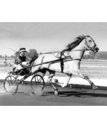 DVD - Harness Greats: DAN PATCH/Greyhound/MACK LOBELL/Nevele Pride/SPEED... - $34.99