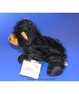 NEW GANZ WEBKINZ PLUSH BLACK BEAR LARGE SEALED - $11.99