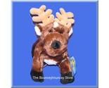 Reindeer3x thumb155 crop