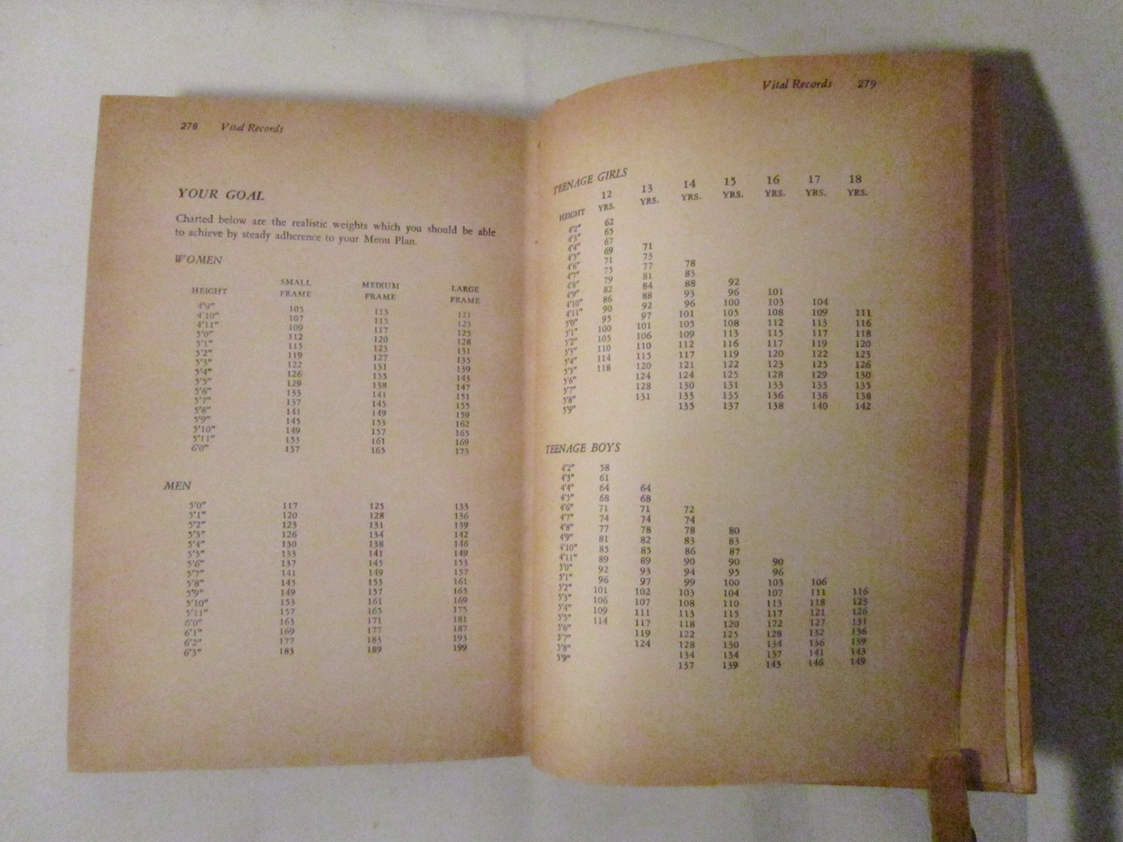 epub Qualitative Quantitative Analyses of Dutch and Afrikaans Grammar