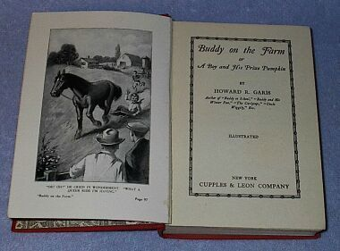 Buddy on the Farm Howard Garis 1929 Juvenile Series Book