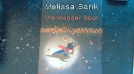 The Wonder Spot By Melissa Bank ( 2005 Hardcover) - $4.50