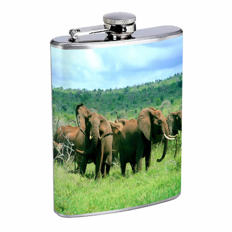 Flask 8oz Stainless Steel Elephant Design-004 Custom Hip Flask Animals Nature